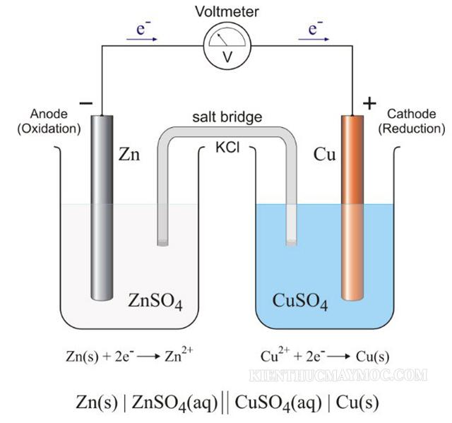 Lịch sử ra đời của dòng điện sinh học là gì? - Cách tạo ra dòng Galvani