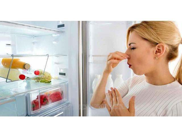 Nguyên nhân gây ra mùi hôi trong tủ lạnh